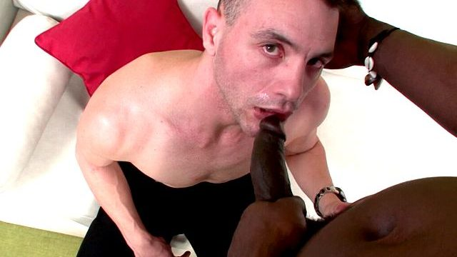 Aroused Brown-haired Faggot Pink Torpedo Tonguing Canu's Ginormous Ebony Spear On His Knees