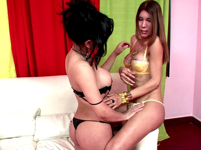 Inviting Trannies In Gorgeous Underwear And Prime High-heeled Slippers Melanie And Vanessa Pawing Their Bods With Fervor