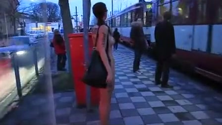 Greatest Inexperienced Exhibitionism, Bus Pornography Gig